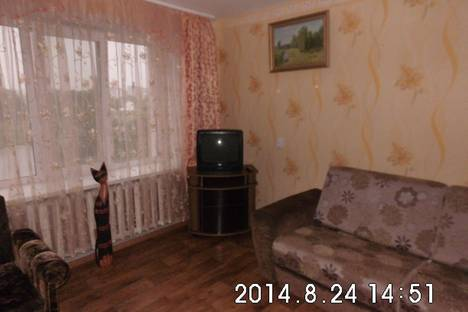 Сдается 1-комнатная квартира посуточнов Полоцке, Нижне-Покровская 39.