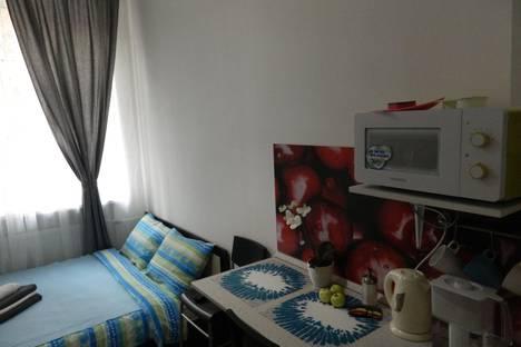 Сдается 1-комнатная квартира посуточнов Санкт-Петербурге, Кирочная ул., 12А.