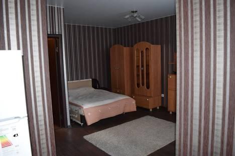 Сдается 1-комнатная квартира посуточно в Нижнем Новгороде, проспект Гагарина 101/4.