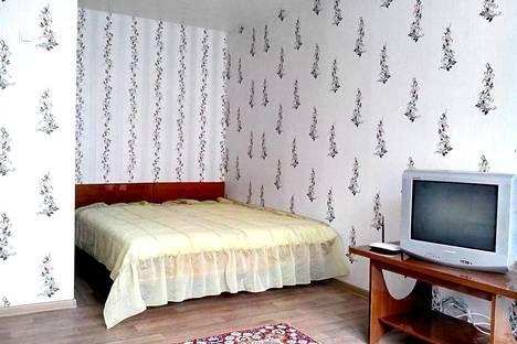Сдается 1-комнатная квартира посуточно в Могилёве, Пр-кт Шмидта, 38.