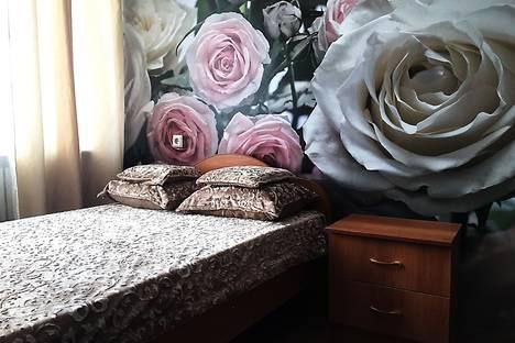 Сдается 1-комнатная квартира посуточнов Воронеже, ул. Циолковского, 8.