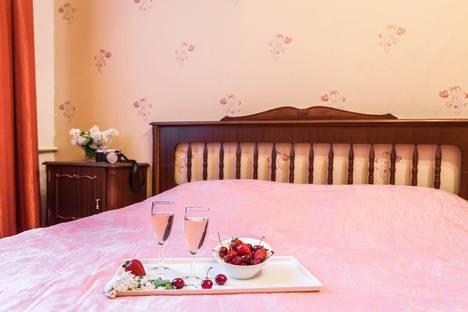 Сдается 1-комнатная квартира посуточнов Санкт-Петербурге, Орловский переулок дом 3.