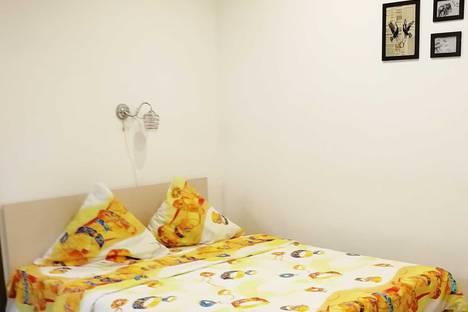 Сдается 1-комнатная квартира посуточно в Гатчине, ул. Хохлова, 16.