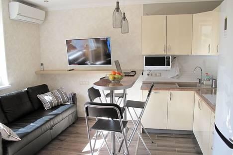 Сдается 1-комнатная квартира посуточно в Сочи, Красная Поляна, Вознесенская улица, 24.