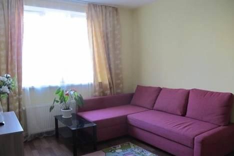 Сдается 1-комнатная квартира посуточно, Санкт-Петербург, ул. Федора Абрамова, 8.