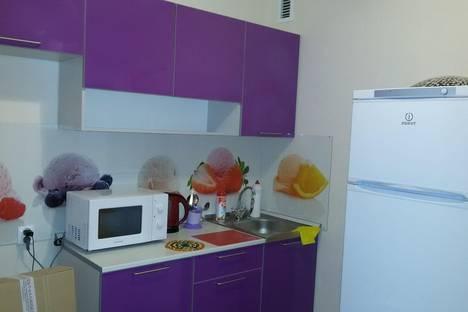 Сдается 1-комнатная квартира посуточнов Великом Новгороде, ул. Якова Павлова дом 5.