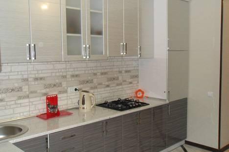 Сдается 1-комнатная квартира посуточно в Каменце-Подольском, вулиця Князів Коріатовичів, 21.