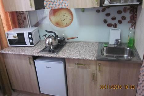 Сдается 1-комнатная квартира посуточно, улица Комсомольская, 2 / 16.