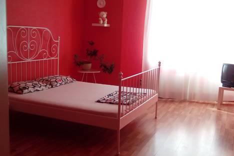 Сдается 1-комнатная квартира посуточно в Екатеринбурге, улица Вилонова, 8.