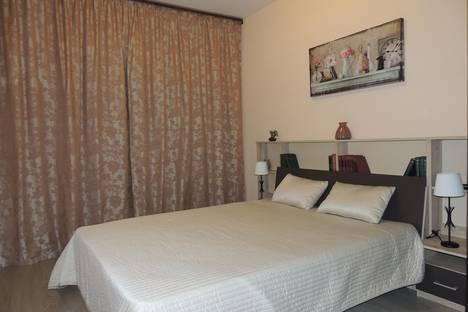 Сдается 1-комнатная квартира посуточнов Санкт-Петербурге, улица Маршала Говорова, 12к1.