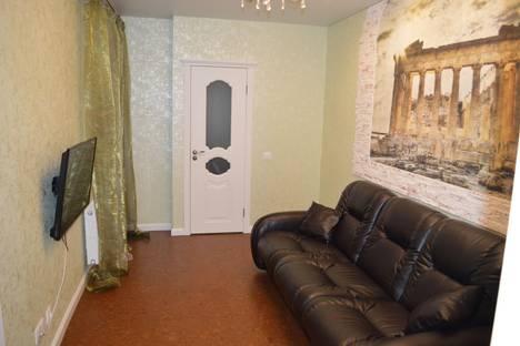 Сдается 2-комнатная квартира посуточнов Рязани, ул. Чкалова, 1к4.