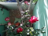 Сдается посуточно комната в Новом Свете. 25 м кв. улица Голицына, 26