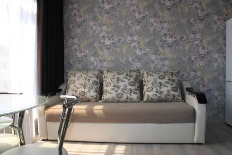 Сдается 1-комнатная квартира посуточно в Сочи, улица Просвещения, 167.