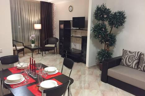 Сдается 1-комнатная квартира посуточно в Сочи, Курортный проспект 105б.