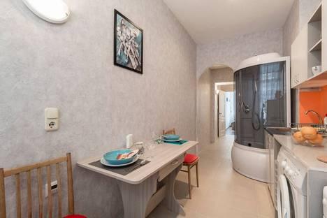 Сдается 1-комнатная квартира посуточнов Санкт-Петербурге, 4-я Красноармейская улица, 8.