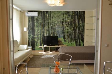 Сдается 1-комнатная квартира посуточно в Липецке, улица Неделина, 61.