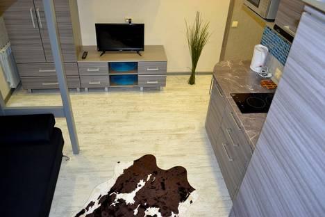 Сдается 1-комнатная квартира посуточнов Барнауле, улица Никитина, 133.