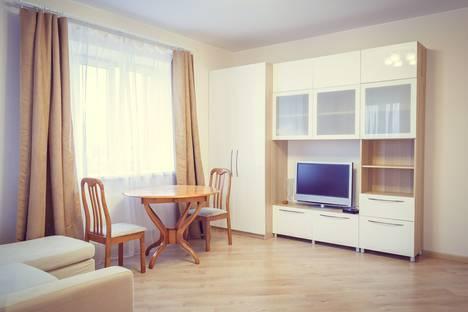 Сдается 1-комнатная квартира посуточнов Санкт-Петербурге, Фермское шоссе 22 к3.