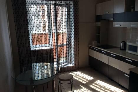 Сдается 1-комнатная квартира посуточно в Санкт-Петербурге, Пулковское шоссе 36 к 4.