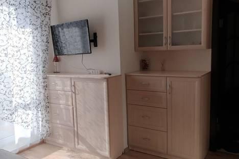 Сдается 1-комнатная квартира посуточнов Пушкине, шоссе Красносельское, 55.