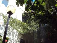 Сдается посуточно коттедж в Гаспре. 0 м кв. Крым,82а Алупкинское шоссе