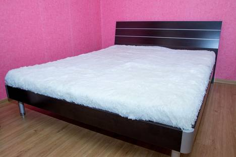 Сдается 2-комнатная квартира посуточно в Челябинске, улица Курчатова, 20.