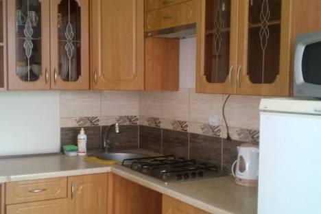 Сдается 1-комнатная квартира посуточнов Светлогорске, Ольховая улица, 1а.