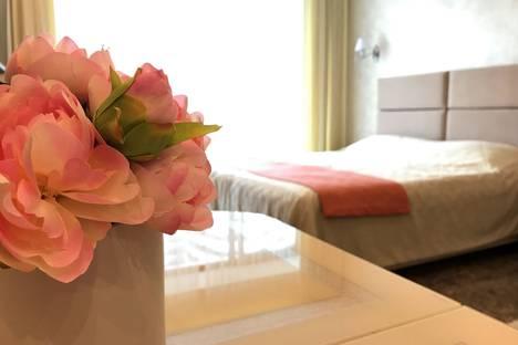 Сдается 1-комнатная квартира посуточнов Сочи, Курортный проспект, 105.