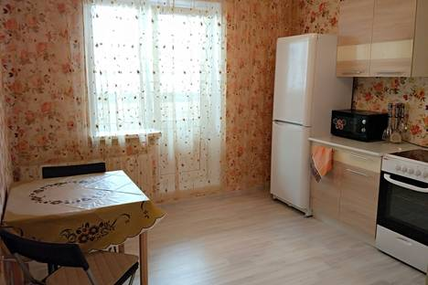 Сдается 1-комнатная квартира посуточнов Санкт-Петербурге, Кушелевская дорога 5 к 2.