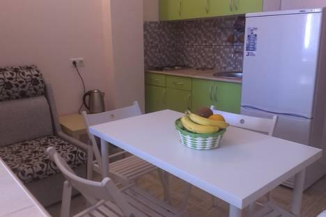 Сдается 1-комнатная квартира посуточно в Адлере, улица Надежды, 8.