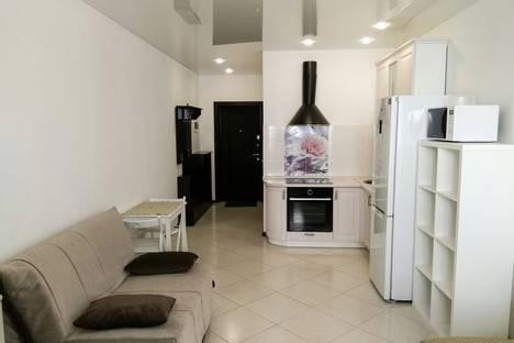 Сдается 1-комнатная квартира посуточно в Сочи, Виноградная 22/1а.