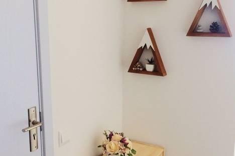 Сдается 1-комнатная квартира посуточнов Кобулети, Georgia, Batumi, 18 Pirosmani Street.