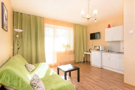 Сдается 1-комнатная квартира посуточно в Челябинске, улица Набережная, 9в.