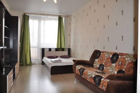 Сдается 1-комнатная квартира посуточнов Санкт-Петербурге, ул. Ворошилова, 33, кор1.