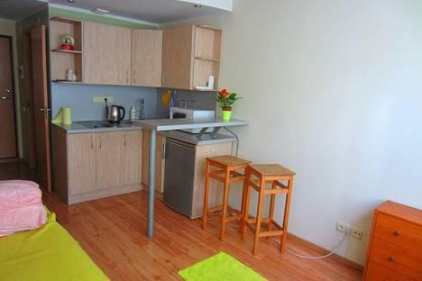 Сдается 1-комнатная квартира посуточно, Вильнюсский уезд,улица Pietario 8.