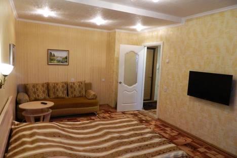 Сдается 1-комнатная квартира посуточно в Нижнекамске, улица Шинников 11.