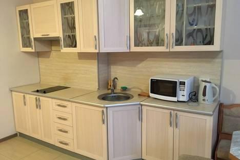 Сдается 1-комнатная квартира посуточнов Домбае, Аланская 25.