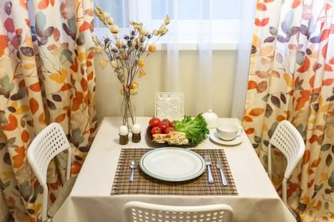 Сдается 1-комнатная квартира посуточнов Санкт-Петербурге, Санкт- Петербург , ул. Есенина 8 к 1.