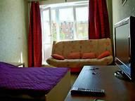 Сдается посуточно 1-комнатная квартира в Нижнем Новгороде. 29 м кв. ул. Белинского 89