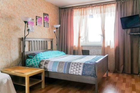 Сдается 1-комнатная квартира посуточно, Санкт-Петербург,улица Михаила Дудина, 23к1.
