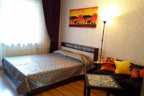 Сдается 1-комнатная квартира посуточно в Санкт-Петербурге, ул.Коллонтай 5 корп.1.