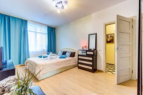 Сдается 1-комнатная квартира посуточно в Санкт-Петербурге, улица Адмирала Черокова д. 20литА.