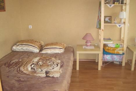 Сдается 1-комнатная квартира посуточно, улица Петухова, 99/1.