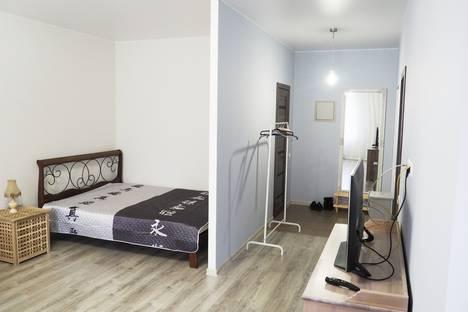Сдается 1-комнатная квартира посуточно в Пушкино, Серебрянка микрорайон, 48.