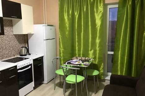Сдается 1-комнатная квартира посуточнов Санкт-Петербурге, улица Михаила Дудина 12.