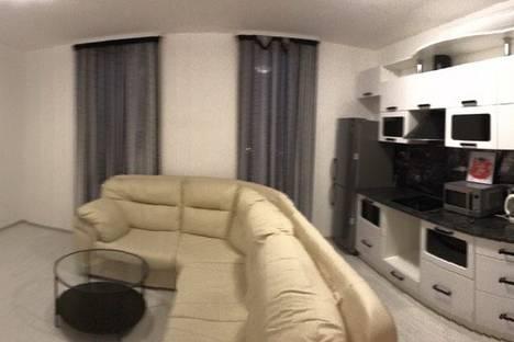 Сдается 3-комнатная квартира посуточнов Санкт-Петербурге, улица Летчика Пилютова 44к2.