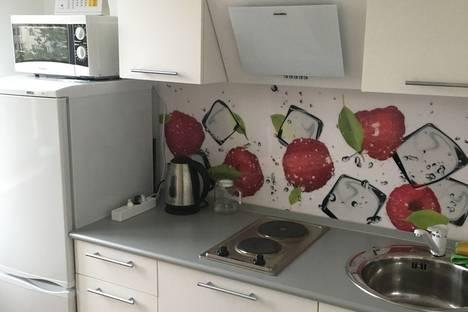 Сдается 3-комнатная квартира посуточно в Санкт-Петербурге, проспект Энтузиастов, 53.