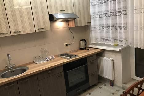 Сдается 1-комнатная квартира посуточно в Санкт-Петербурге, проспект Юрия Гагарина 14 к 6.