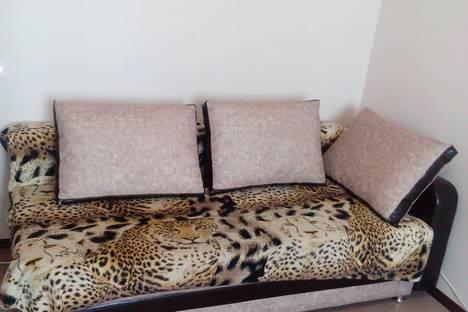 Сдается 1-комнатная квартира посуточно в Иркутске, Красноярская улица, 57.