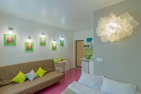 Сдается 1-комнатная квартира посуточно в Санкт-Петербурге, улица Некрасова, дом 1/38.